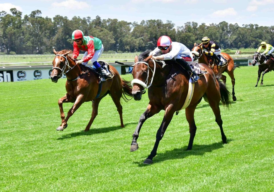 Due Diligence wins at the Vaal.