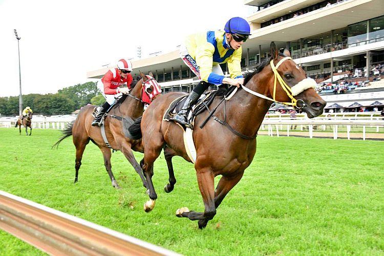 Vaseem (Race 5).