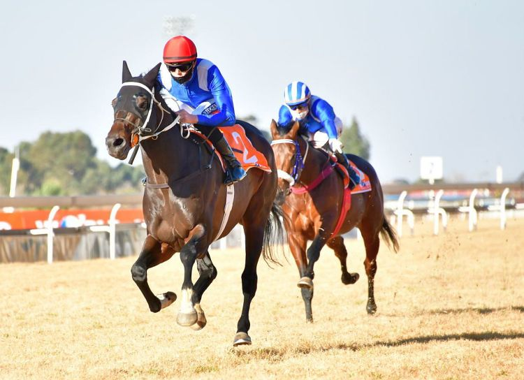 Hawwaam races clear of Soqrat. (JC Photos).