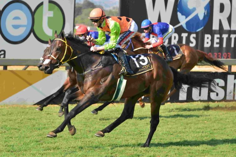 Mount Pleasant wins the Gr2 Joburg Spring Challenge. (JC Photos).