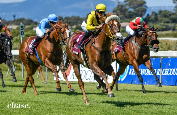 Queen Supreme wins Paddock Stakes of 2021, with Princess Calla (far side) and Clouds Unfold (blue silks) behind her. (Chase Liebenberg).