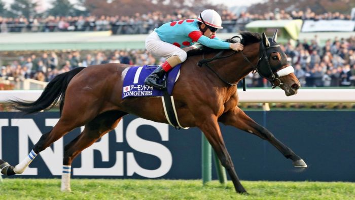 Almond Eye wins Japan Cup.