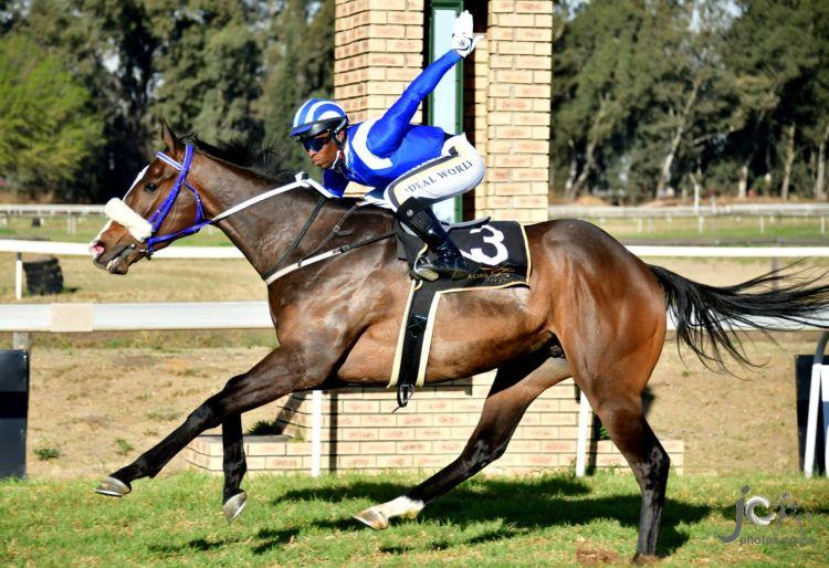 Al Muhtana, fluent comeback. (JC Photos).